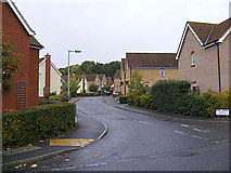 TM3763 : Long Avenue, Saxmundham by Adrian Cable