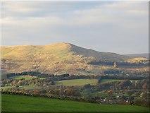 NN9901 : Seamab Hill by Richard Webb