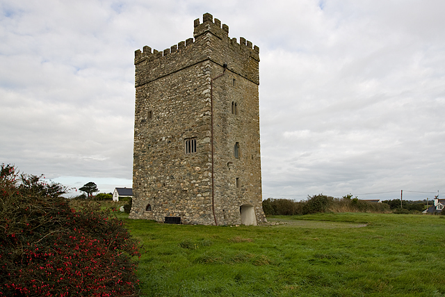 Castles of Leinster: Ballyhealy, Wexford (2)
