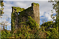 X0882 : Castles of Munster: Templemichael, Waterford (2) by Mike Searle