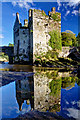 W4172 : Castles of Munster: Carrigadrohid, Cork - revisited (3) by Mike Searle