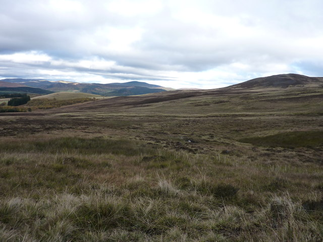 Moorland above Glen Muick