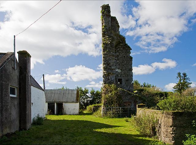 Castles of Munster: Coppingerstown, Cork (2)
