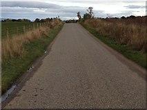 NH5757 : B9163 near Alcaig by Steven Brown