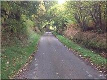 NH5857 : Minor road past Easter Oak Wood by Steven Brown