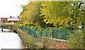 J3674 : Autumn trees, Connswater, Belfast (2) by Albert Bridge