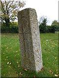 TF0119 : Saxon stone by Bob Harvey