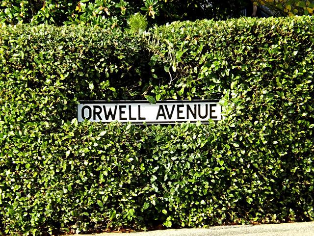 Orwell Avenue sign