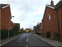 TM3763 : Hubbards Close, Saxmundham by Adrian Cable