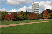 TQ2780 : Autumnal trees at the northern edge of Hyde Park by Doug Lee
