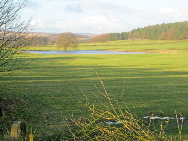 Meadows and pond near Swiss Lake