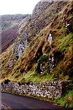 C9444 : Antrim Coast - Giant's Causeway - Shuttle Bus Route, Wall & Hillside by Joseph Mischyshyn