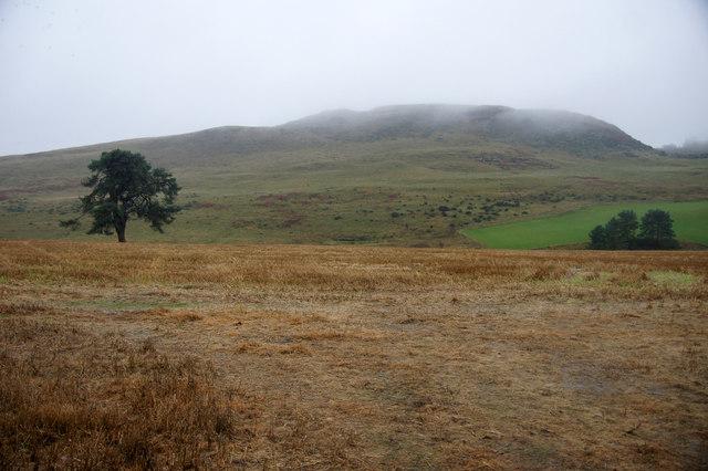 Fields north of Barry Hill, near Alyth