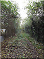 TM3865 : Footpath to Dorleys Corner by Geographer