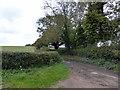 TQ6809 : Church Lane, Hooe by PAUL FARMER