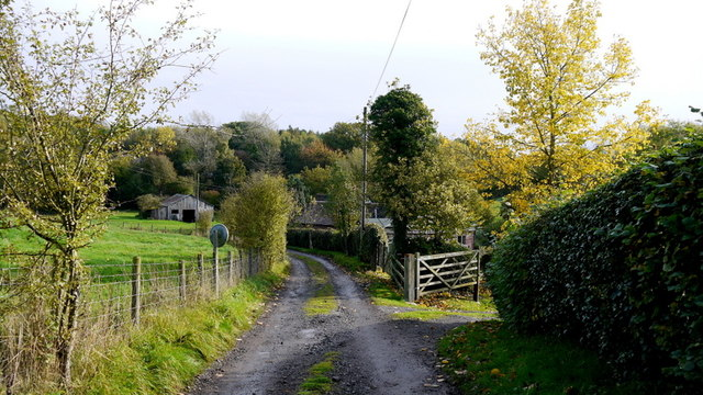 Lane and footpath