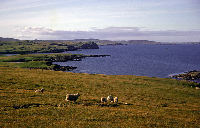 Above the Bay of Okraquoy