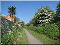 NZ2866 : Footpath near Wallsend Golf Course, North Tyneside by Andrew Tryon