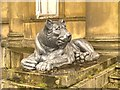 SD8304 : Heaton Hall Lion by David Dixon