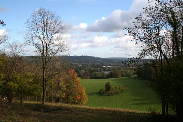 Gatton Park:  view