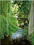 SO3656 : Mill Stream at Westonbury by Jonathan Billinger