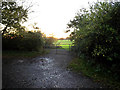 TM3578 : Field entrance off Wissett Road by Adrian Cable