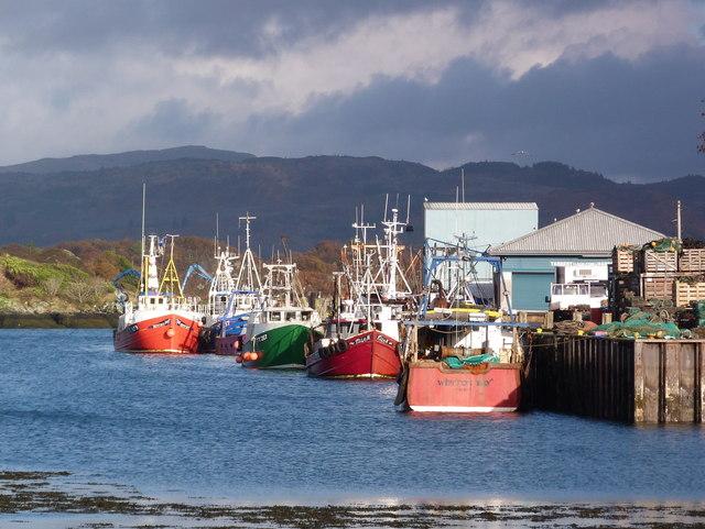 Fishing boats at Tarbert dock