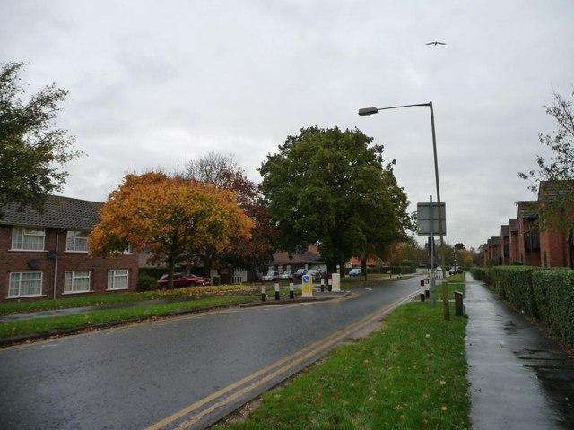 Traffic calming, Peartree Lane