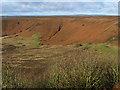 SE8493 : Bracken-clad slopes of the Hole of Horcum by Pauline E