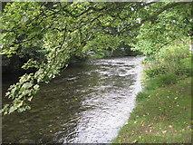 NY2623 : The River Greta by David Medcalf