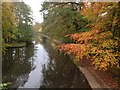 SD4853 : Lancaster Canal in the Autumn by John H Darch