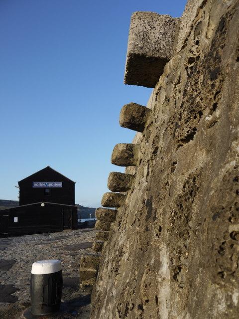 Granny's Teeth steps on the Cobb Lyme Regis