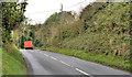 J4159 : The Station Road, Saintfield (2) by Albert Bridge