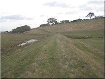 SE8924 : Path into Whitton by Jonathan Thacker