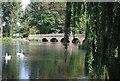 TQ4871 : Five Arch Bridge by N Chadwick