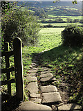 NZ8607 : Laid stone path of the Esk Valley Walk by Trevor Littlewood