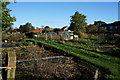 SE8741 : Princess Parade Allotments from Sweep Road by Ian S