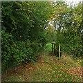 TL3353 : Waymarked footbridge by John Sutton