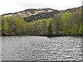 NN4907 : Loch Katrine by David Dixon