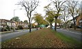 SP1391 : Northeast end of Tyburn Road B4148 by Robin Stott