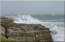 SY6768 : Red Crane Portland Bill during storm by sue hogben