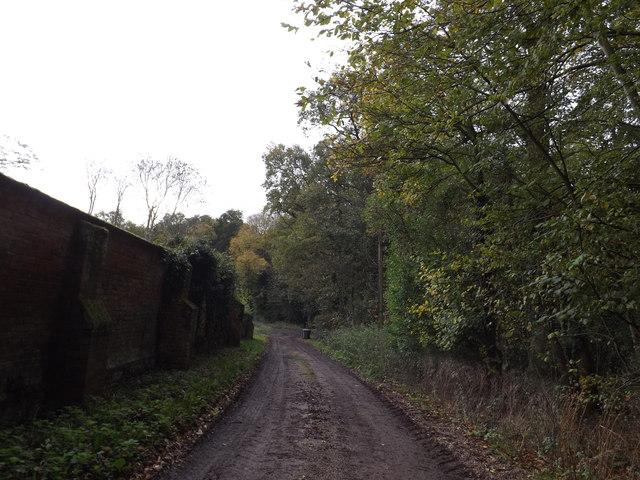 Hollow Lane, Sibton