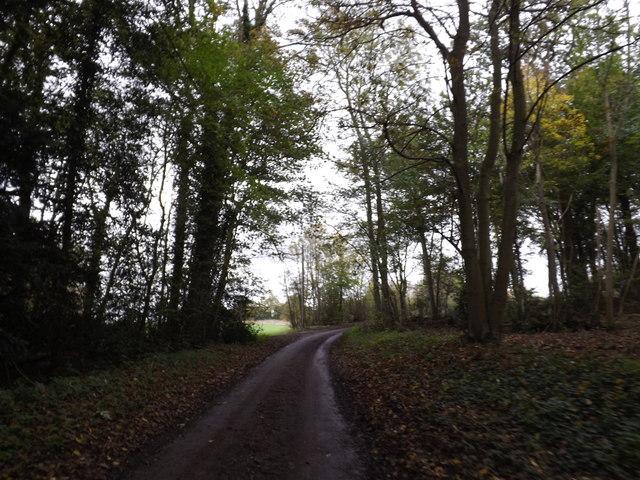 Hollow Lane (New Road), Sibton