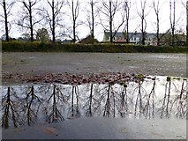 H4572 : Reflections, Omagh by Kenneth  Allen
