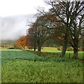 NN6947 : Field boundary, Chesthill by Alan O'Dowd