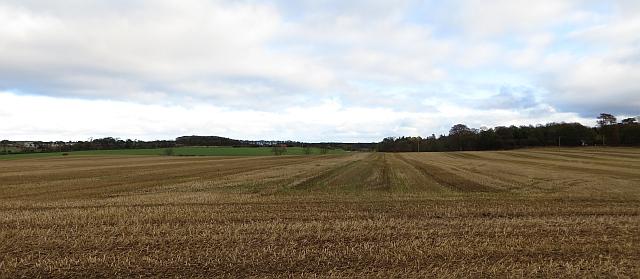 Stubble near Waughton