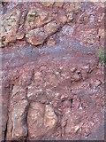 C9444 : Inter-basaltic deposits below the Visitors' Centre by Eric Jones