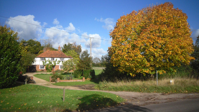 House, Path and Tree, Shiplake Row