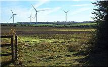 SK5758 : Lindhurst Wind Farm, Rainworth, Notts. by David Hallam-Jones
