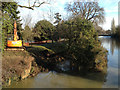 SP3165 : Fallen tree, Jephson Gardens, Leamington by Robin Stott